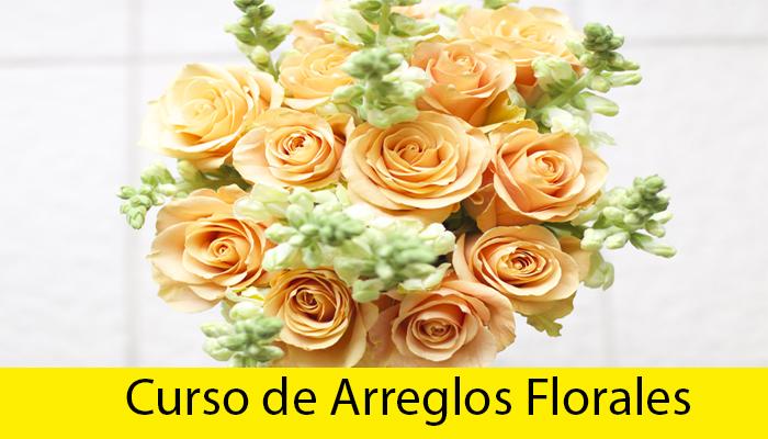 curso de arreglos florales online